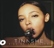 Ride Of Your Life - Tinashe